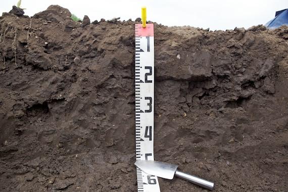 土壌の物理特性を観察